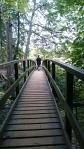Styal Woods walk