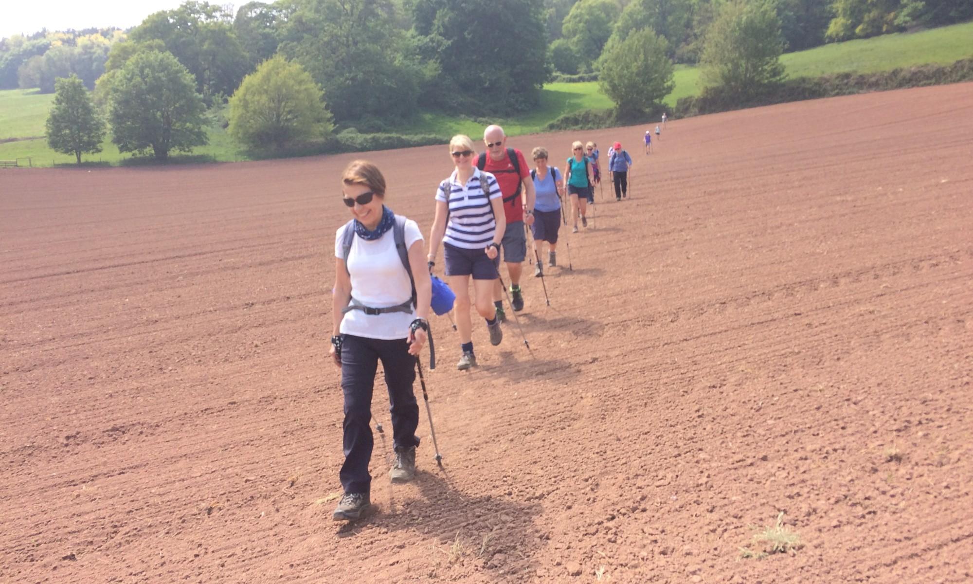 North Cheshire Walking Sandstone Trail Peckforton
