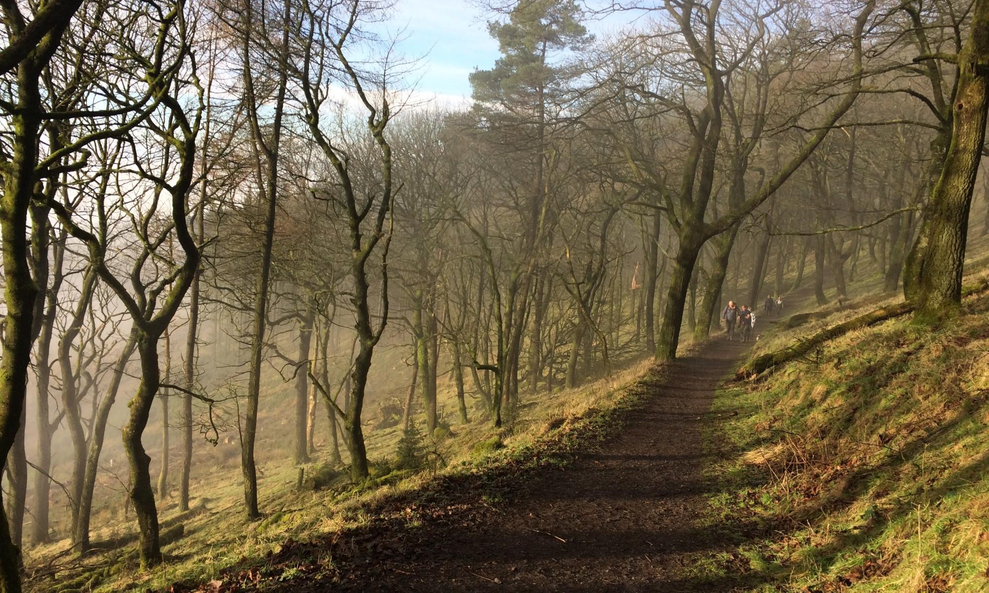Nordic Walking Macclesfield Forest