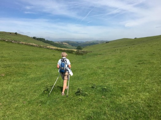 Ilam and Dovedale walk Jul 2019